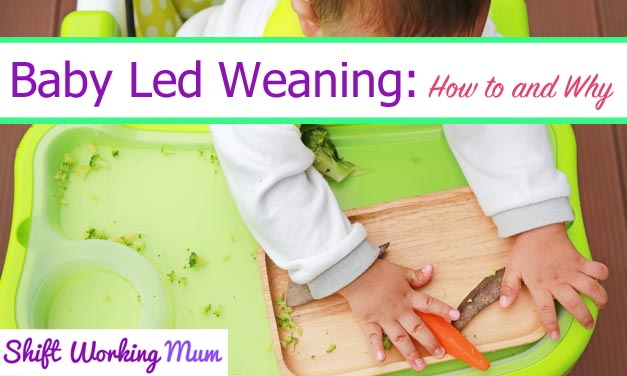 Baby Led Weaning: My experiences
